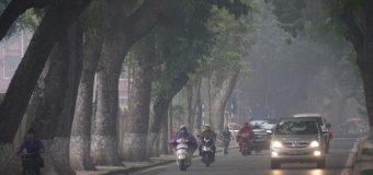 Làm thế nào để chuyển nhà dễ dàng hơn trong thời tiết nồm ẩm?